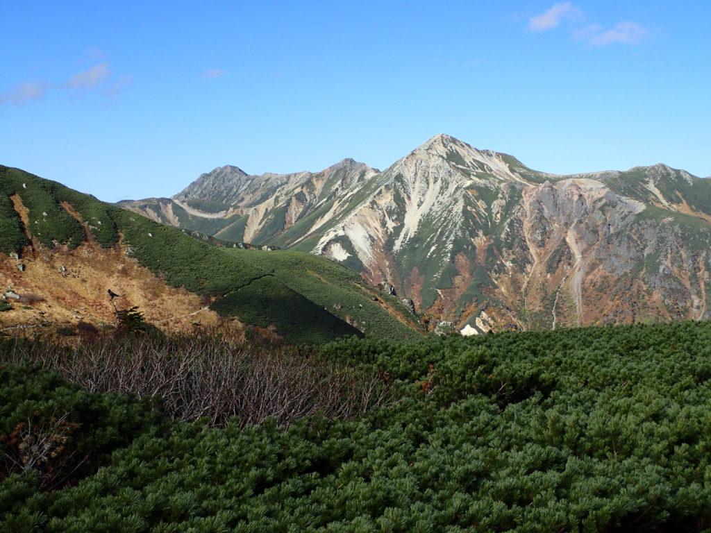 双六岳付近から見る鷲羽岳と水晶岳
