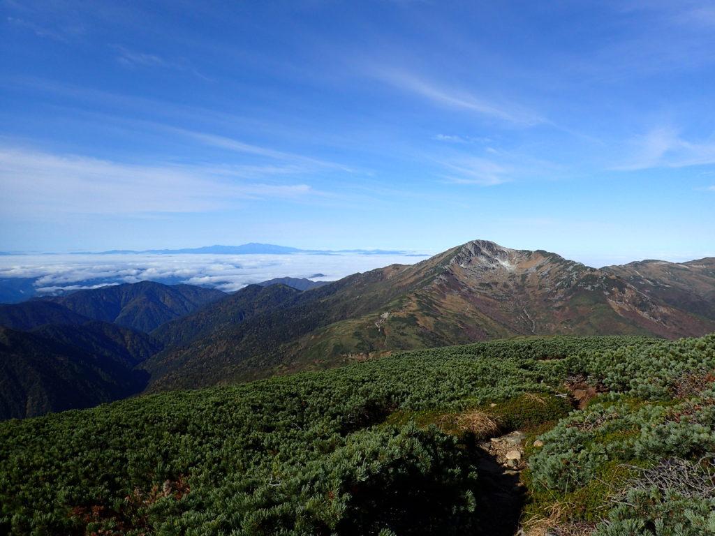 双六岳方向から見る黒部五郎岳と白山