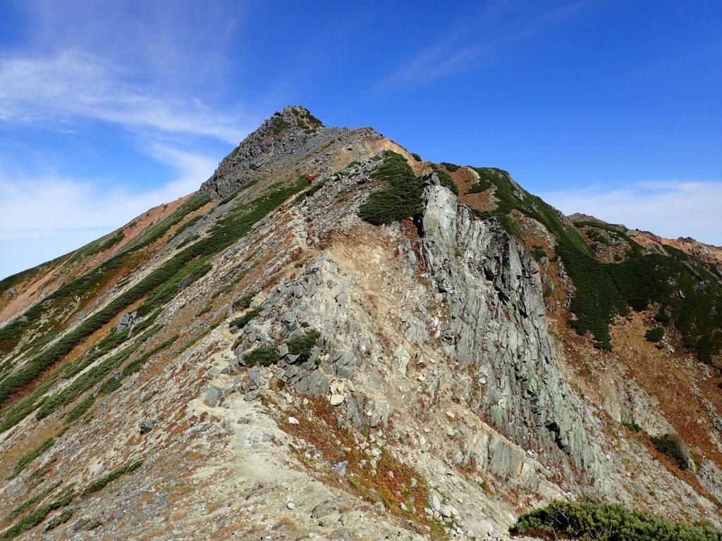 鷲羽岳方向から見るワリモ岳