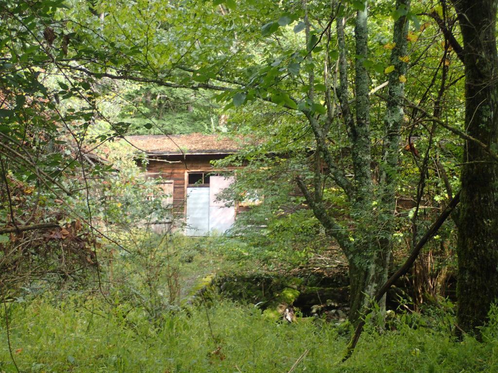 西沢渡の造林小屋跡