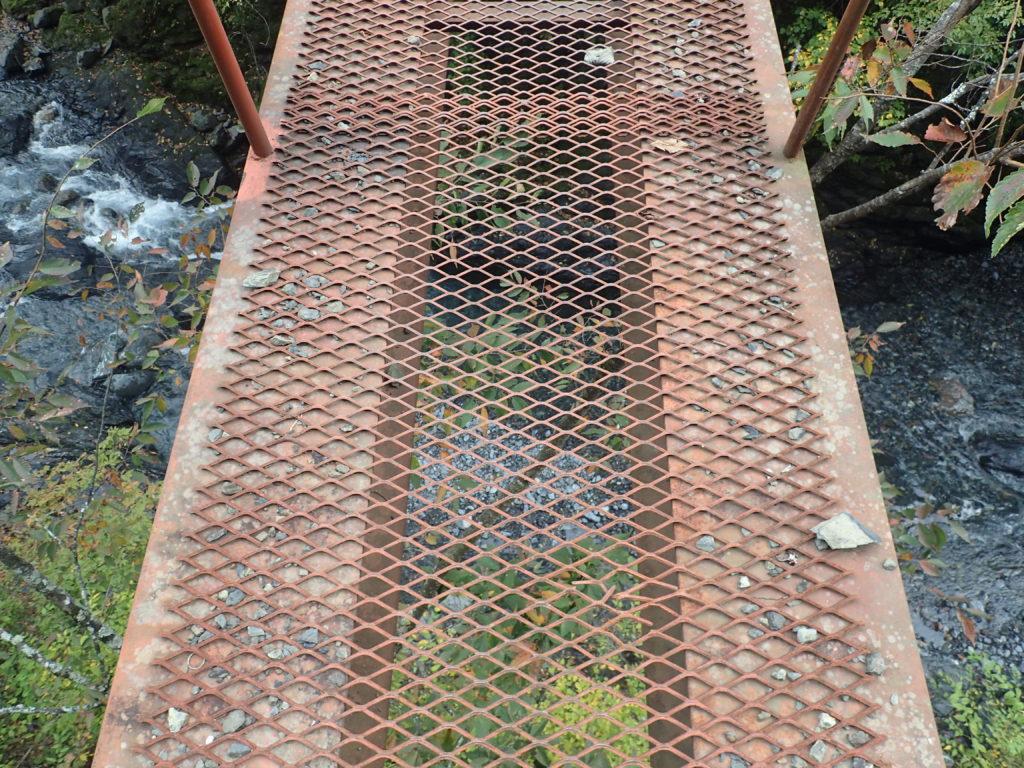 易老渡から易老岳へと向かう分岐の橋