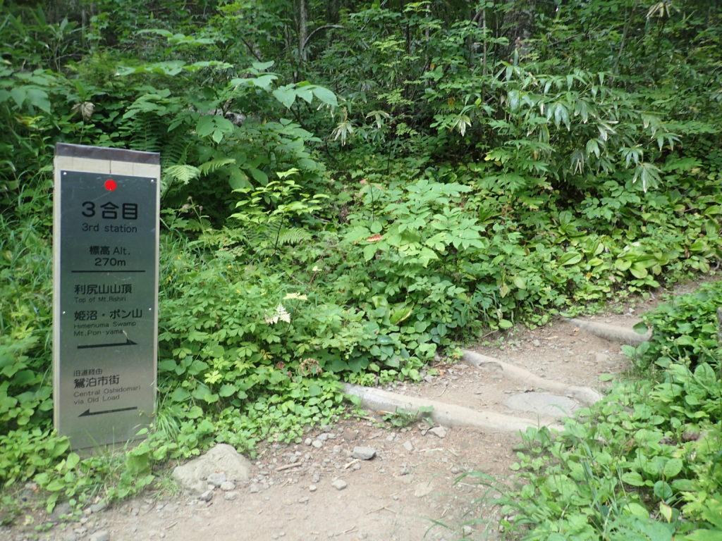 利尻山の鴛泊コース登山道の3合目