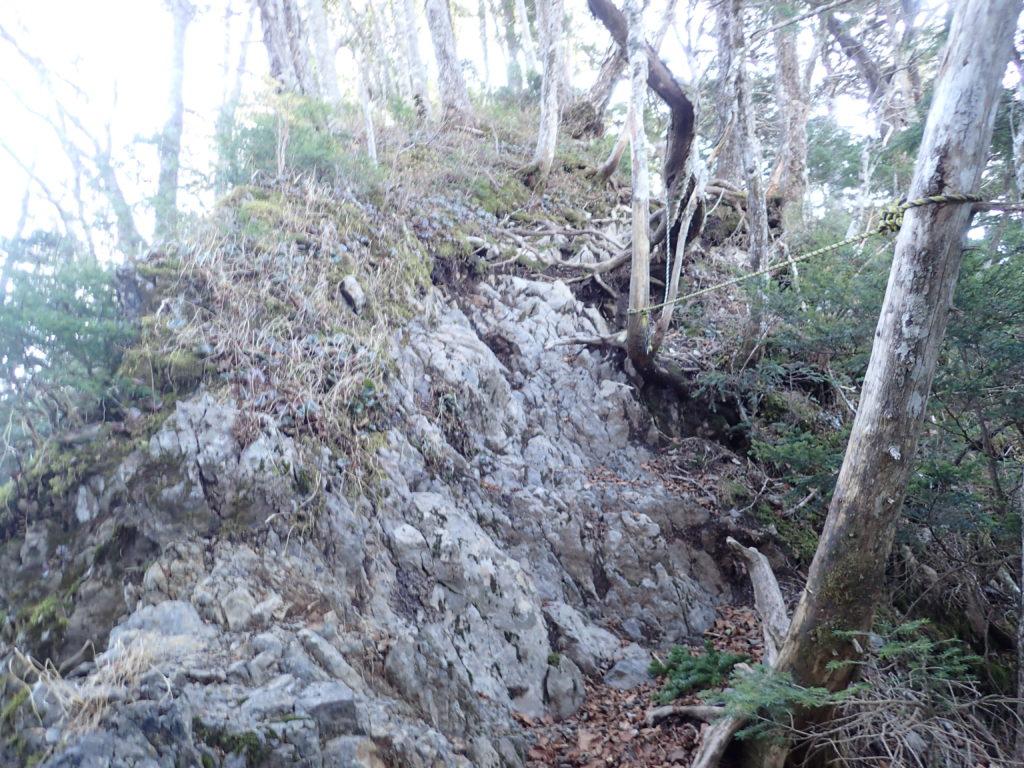 南アルプスの易老岳山頂近くの岩場