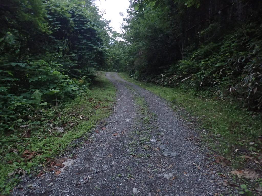 幌尻岳の振内ルートの林道