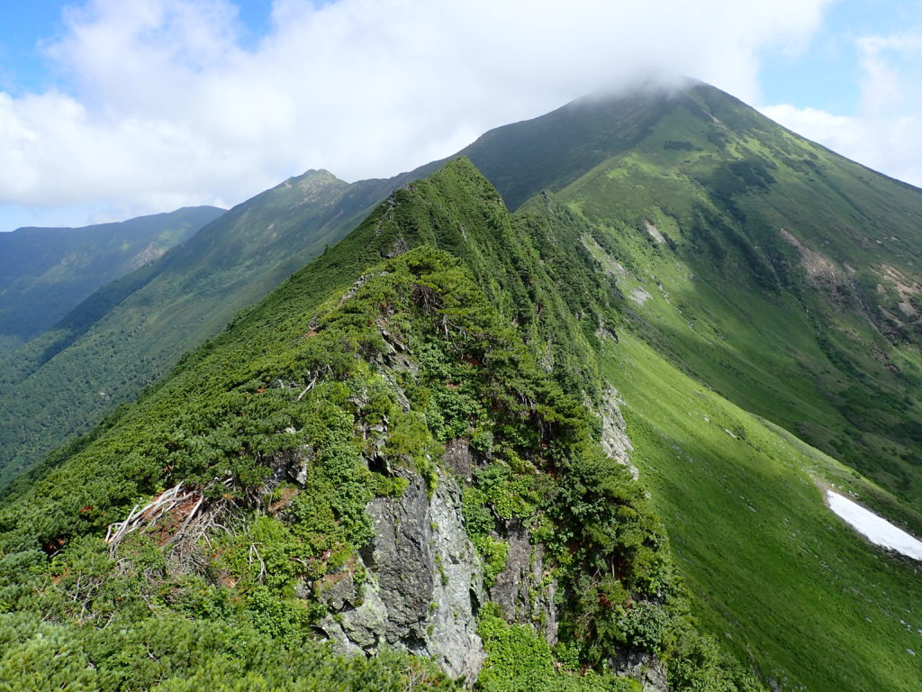 幌尻岳と戸蔦別岳の間の肩付近