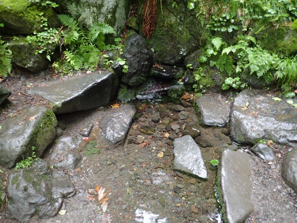 利尻山の甘露泉水