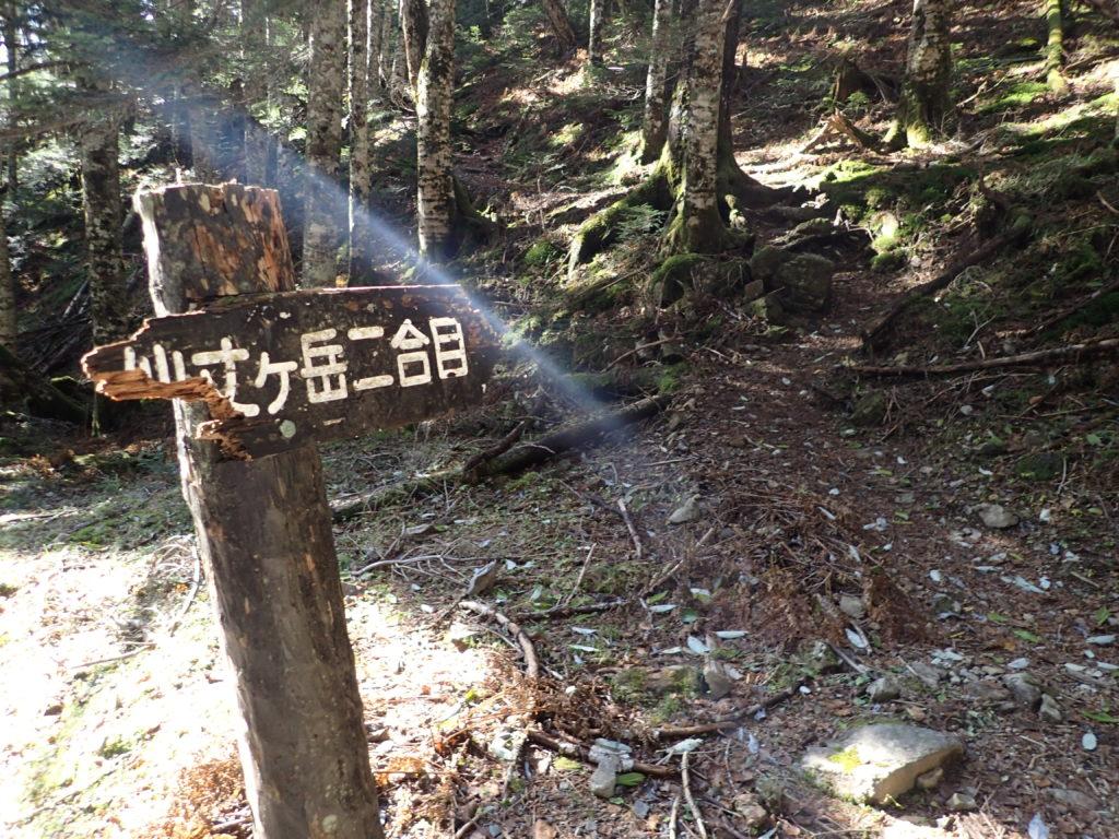 仙丈ヶ岳二合目ルート登山口