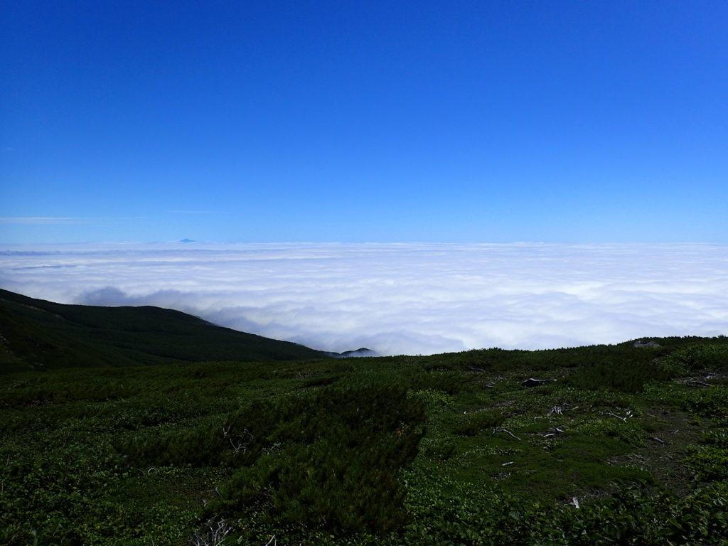 羅臼平付近からみる雲海