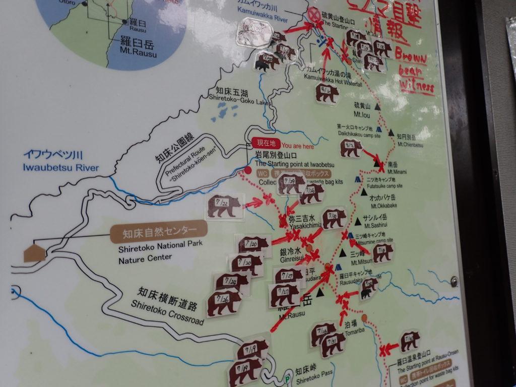 木下小屋の羅臼岳周辺のヒグマ目撃情報