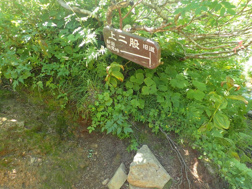 斜里岳登山道の上二股