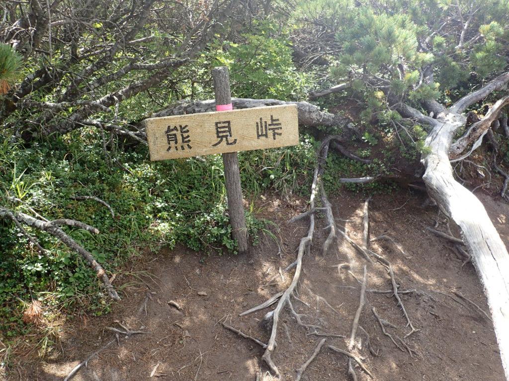 斜里岳の新道コースの熊見峠