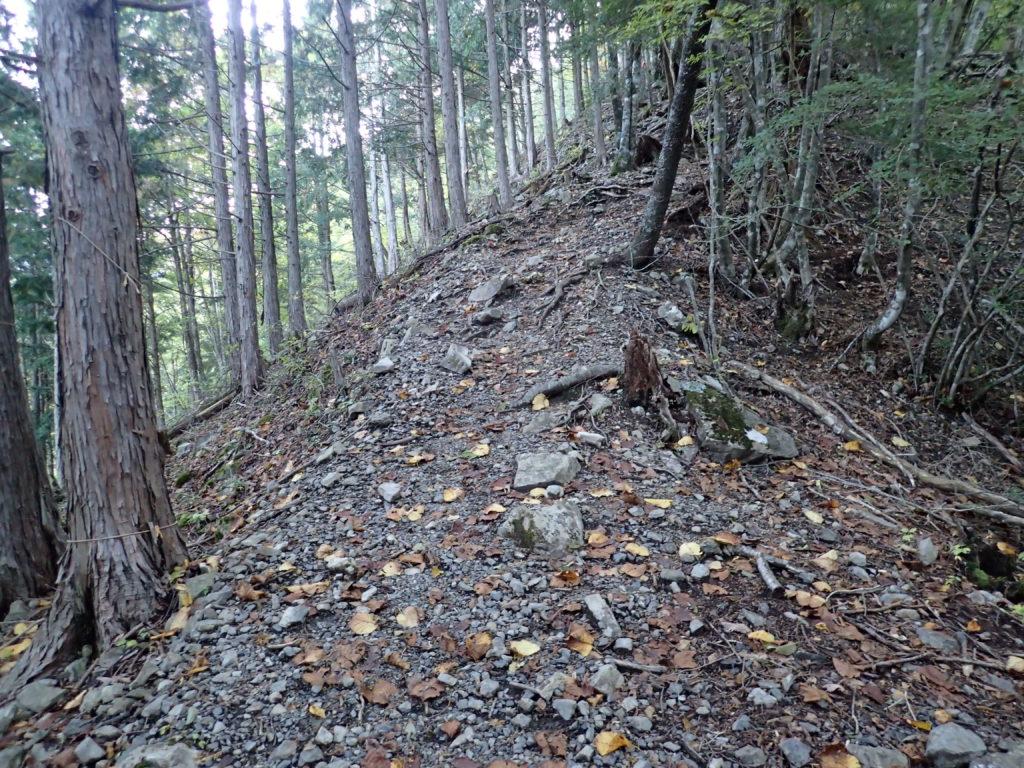 光岳の易老渡ルート登山道