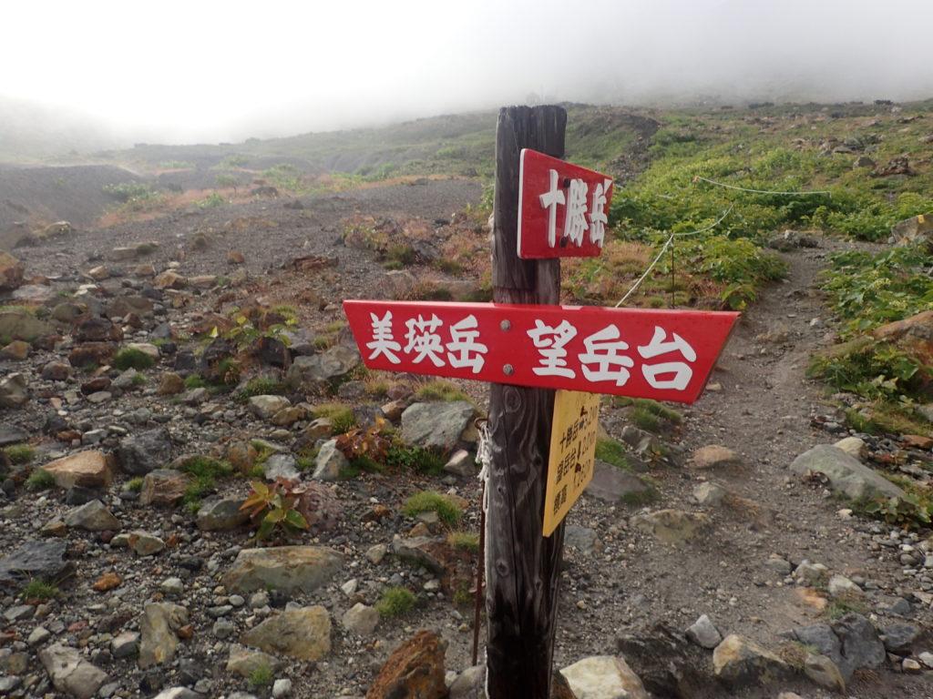 十勝岳と美瑛岳の分岐