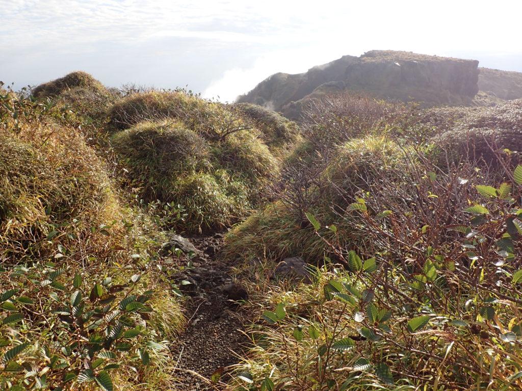 阿蘇山の高岳東峰に続く登山道