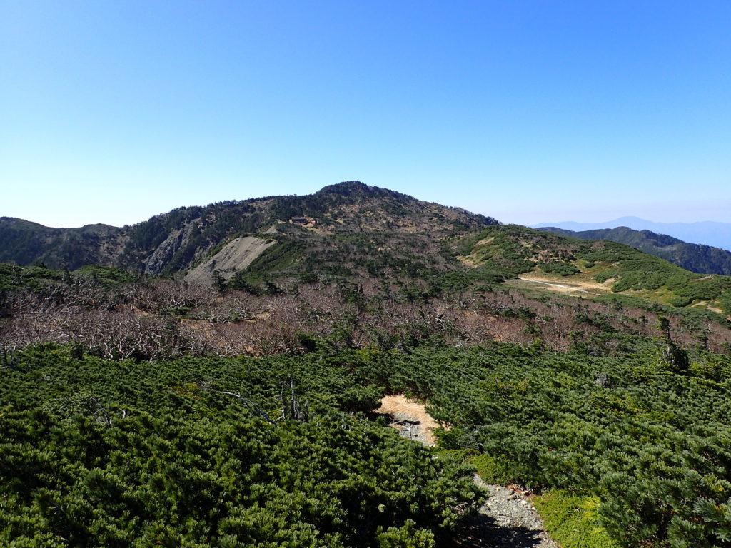 イザルヶ岳から見る光岳