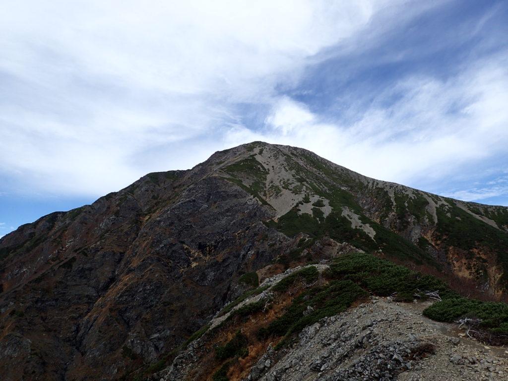 聖岳の便ヶ島ルートの小聖岳付近から見上げる聖岳山頂