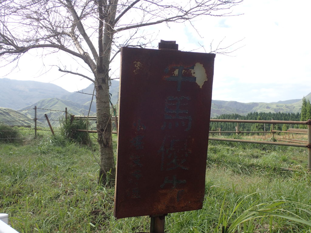 仙酔峡道路の牛馬優先の看板