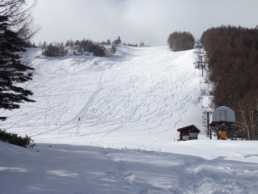 Mt.乗鞍スノーリゾートのカモシカコース