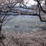 光城山で花見登山(2018年4月15日)