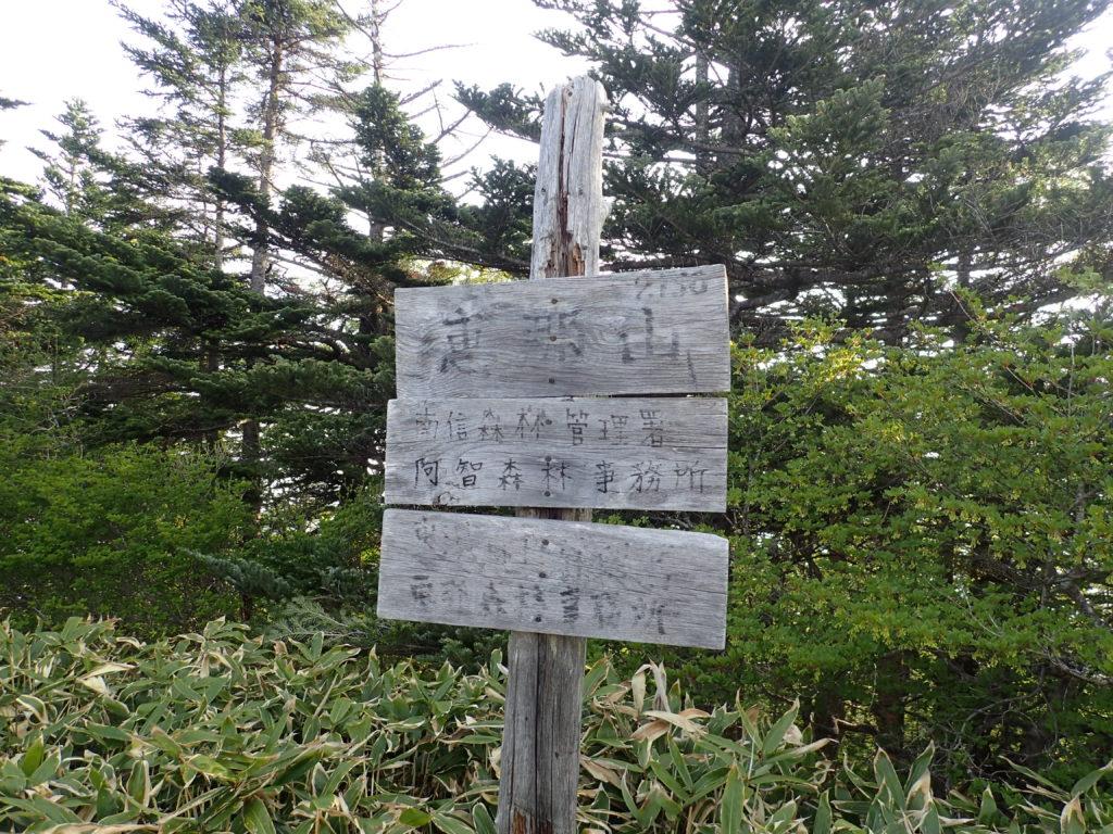 ひと夏での日本百名山全山日帰り登山で撮影した恵那山の古い方の山頂標