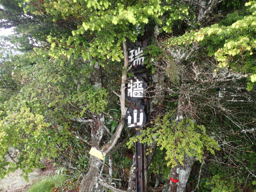 ひと夏での日本百名山全山日帰り登山で撮影した瑞牆山の山頂標