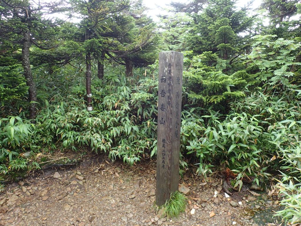 ひと夏での日本百名山全山日帰り登山で撮影した西吾妻山の山頂標