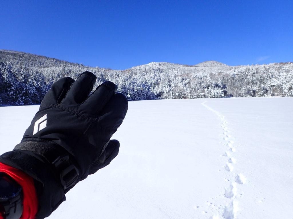 冬の北八ヶ岳の白駒池でブラックダイヤモンドの雪山用グローブであるソロイストの記念撮影