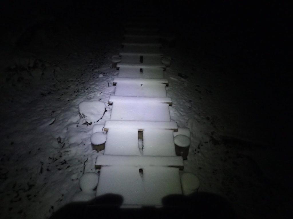 夜明け前で暗闇の大倉尾根をブラックダイヤモンドの登山用ヘッドライトであるストームの灯りで進む。