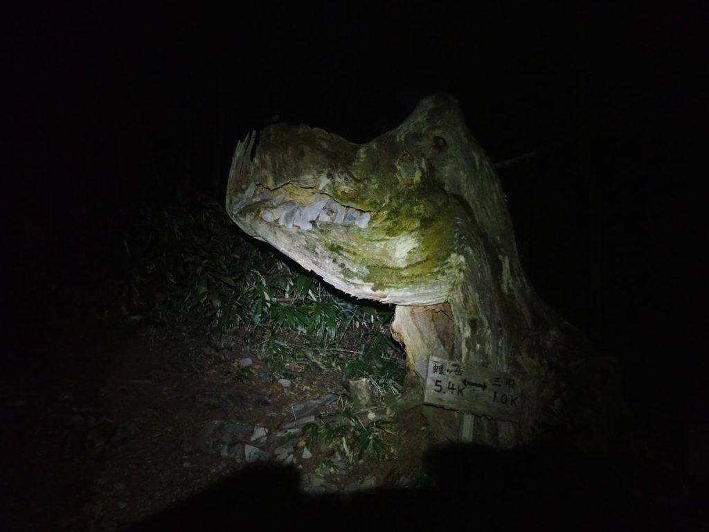 ブラックダイヤモンドの登山用ヘッドライトであるストームで暗闇の登山道で三股ゴジさんを照らす