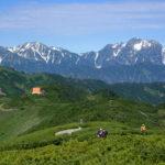 チングルマが満開だった扇沢からの爺ヶ岳登山(2019年8月3日)