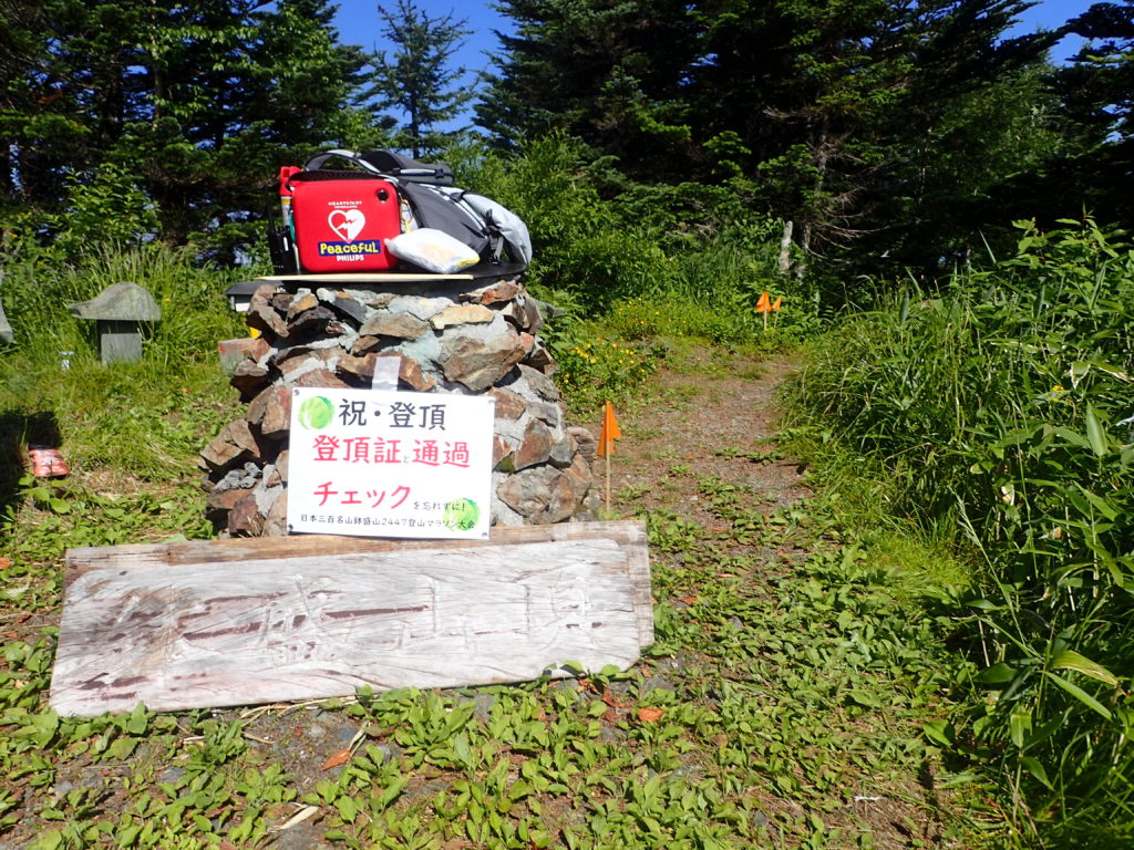 日本三百名山である鉢盛山の山頂