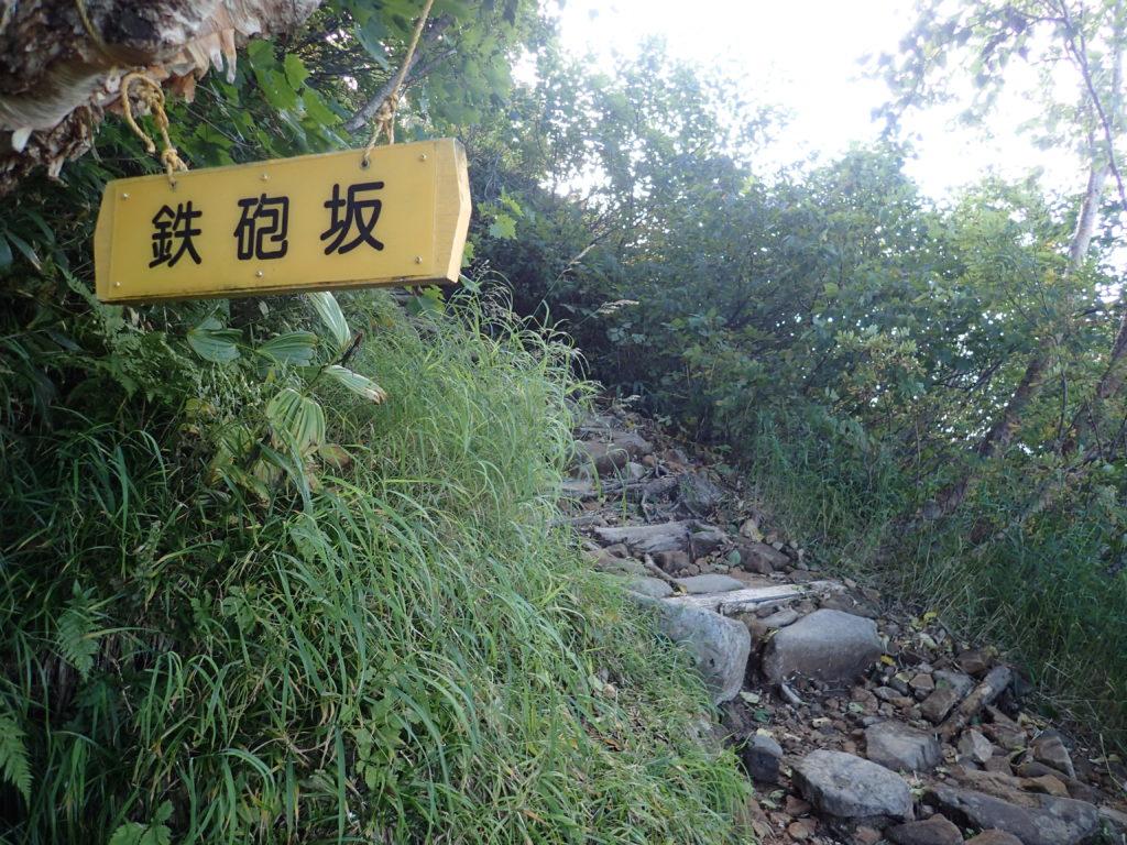 北アルプス爺ヶ岳の登山道(柏原新道)の鉄砲坂