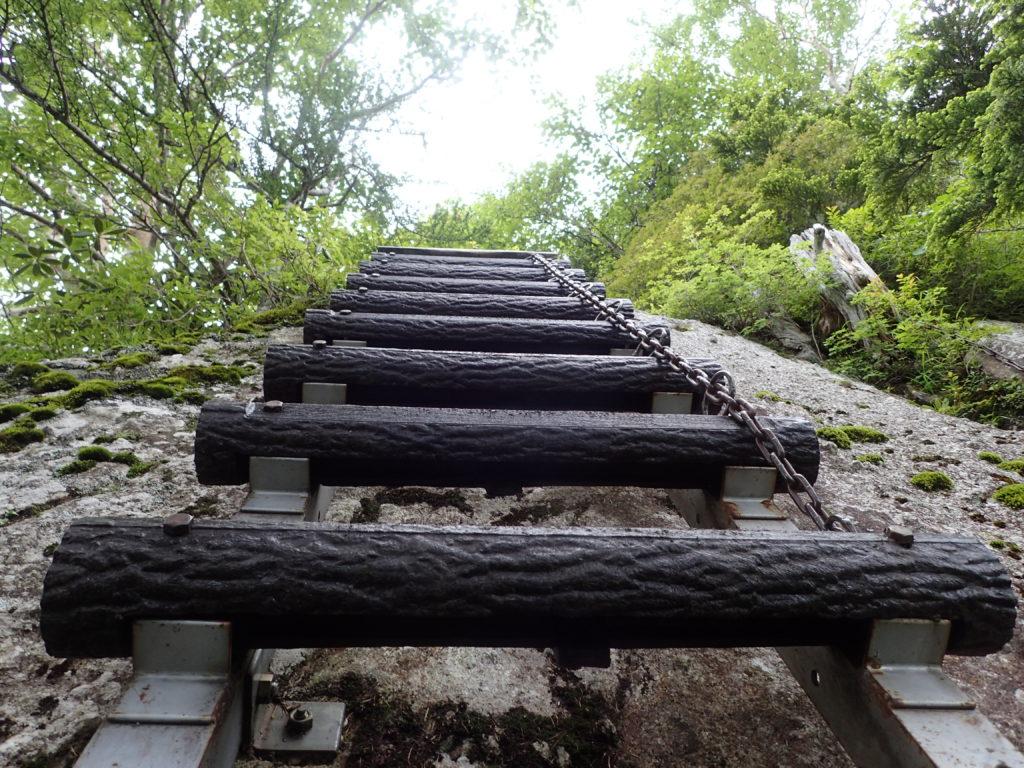 南アルプス甲斐駒ヶ岳黒戸尾根登山道のハシゴ
