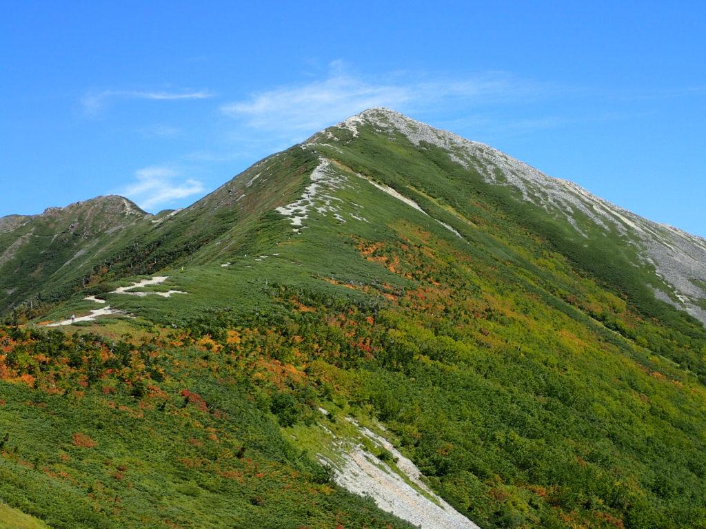 種池山荘方面から見上げた爺ヶ岳南峰